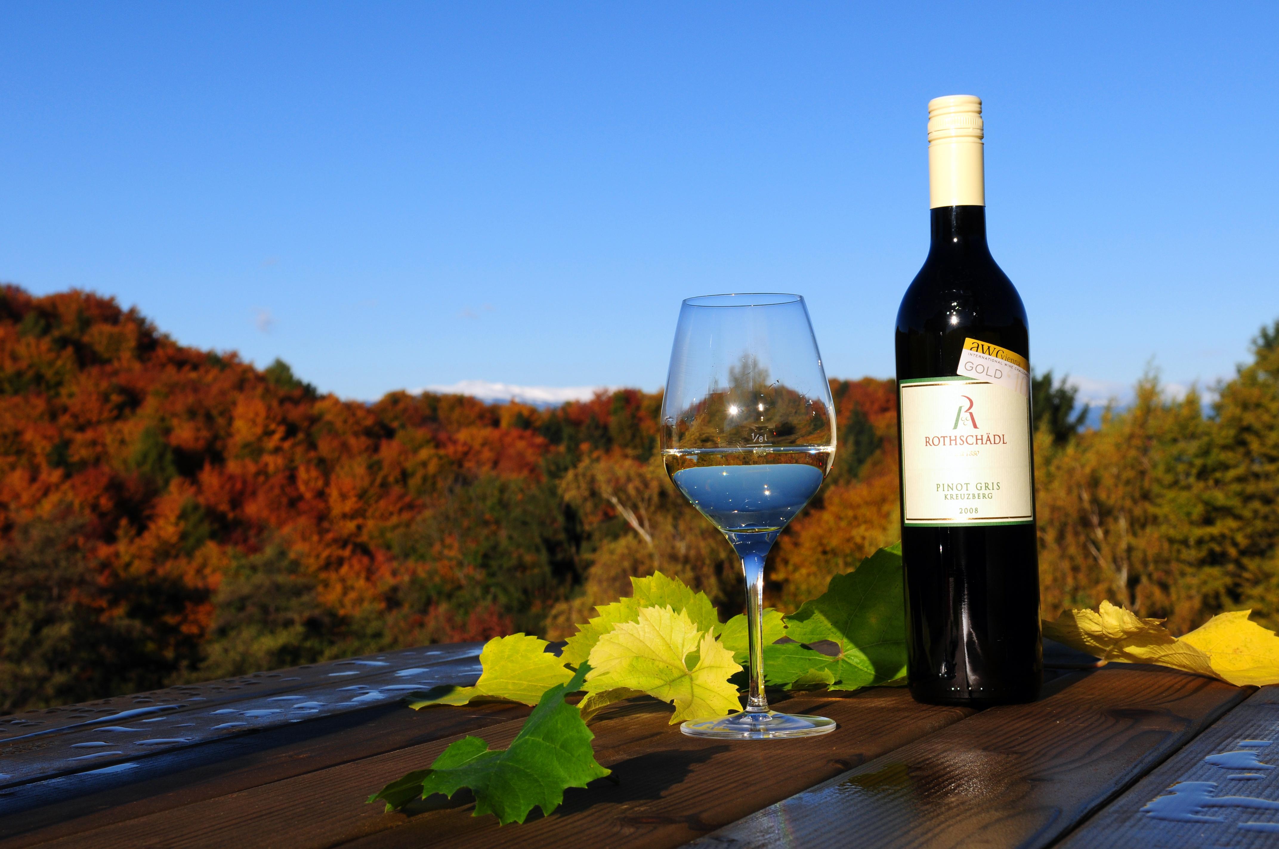 Wein - Pinot Gris