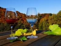 Rothschädl Wein