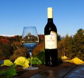 Weinglas und Weinflasche umgeben von Weinblättern. Im Hintergrund ist ein herbstlich bunter Wald.