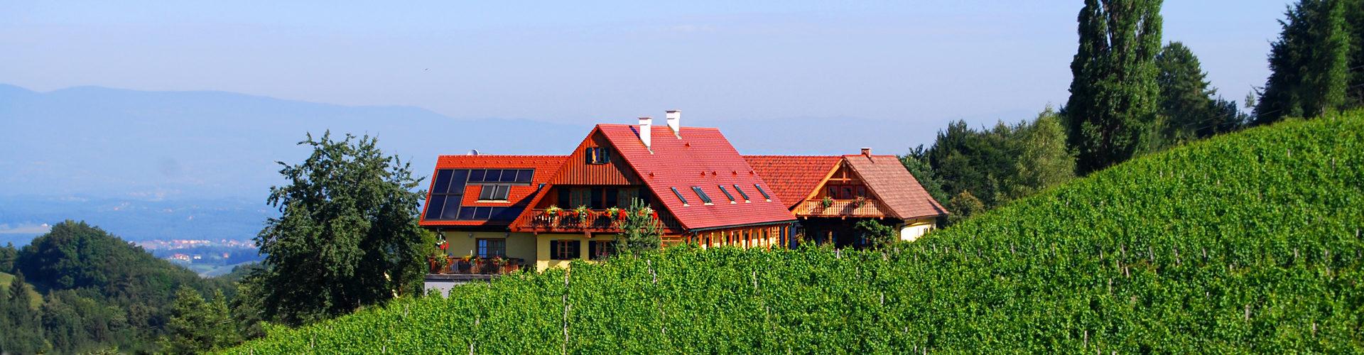Weingut Winzerzimmer Rothschädl umgeben von Weingärten in der wunderschönen Landschaft der Südsteiermark.