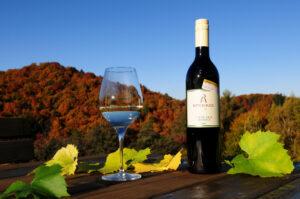 ausgezeichneter-Wein-suedsteirische-steirische-oesterreichische-weine-top-winzer-weingut-rothschaedl-herbst-Suedsteiermark-Landschaft